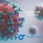 Microbiota bucal